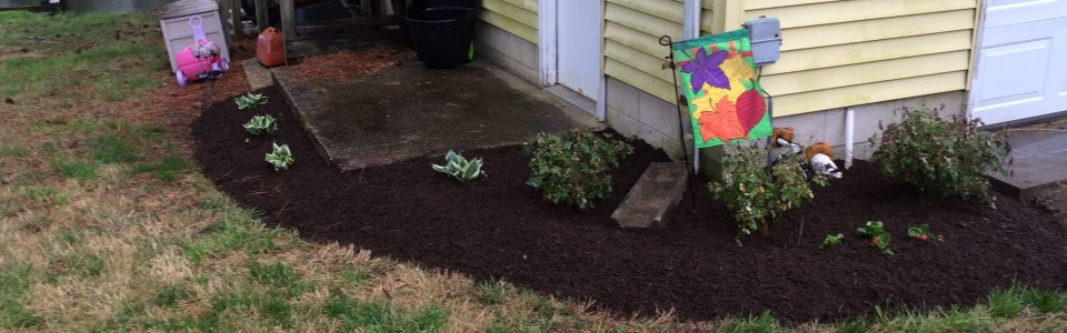 Williamsburg, VA Landscaping and Lawn Care – Coastal Edge Landscaping