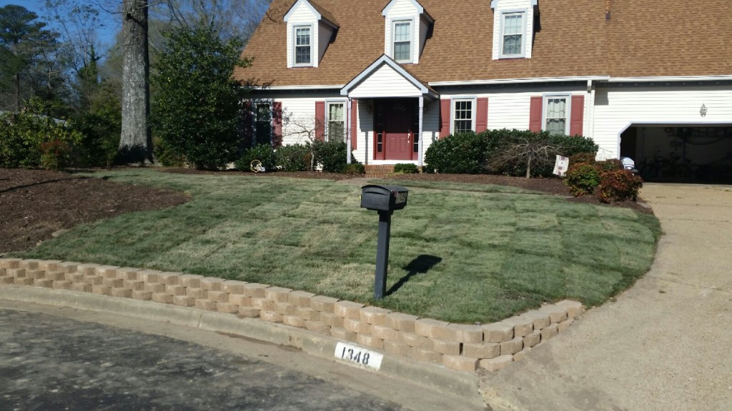 Virginia Beach Sod